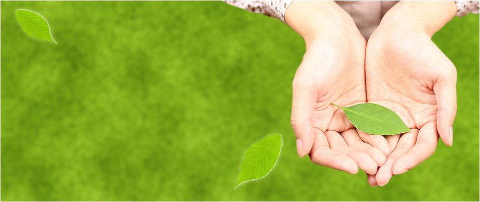 プロの技術で洗浄&コーティング お墓・防草舗装やその他石材のことならお任せ下さい。